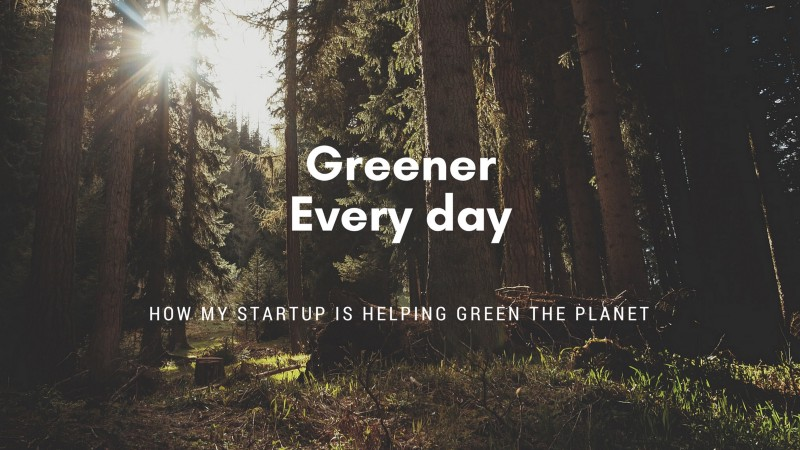 forest and green startup